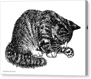 Cat-tabby-posters-1 Canvas Print by Gordon Punt