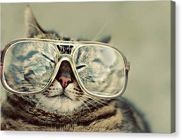 Cat With Glasses Canvas Print by Sara Miedema