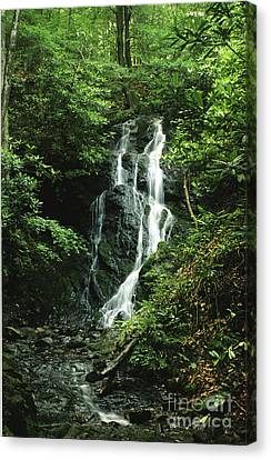 Cataract Falls In Smokies Canvas Print