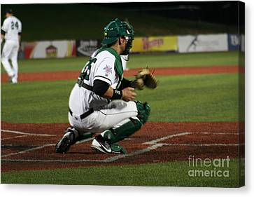 Catcher Canvas Print by Roger Look