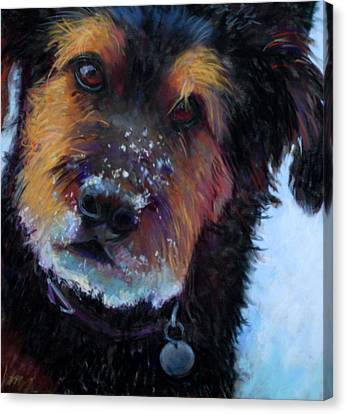 Catching Snowballs Canvas Print by Billie Colson