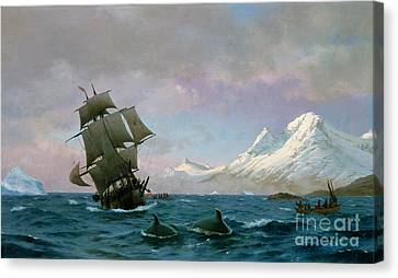 Catching Whales Canvas Print by J E Carl Rasmussen