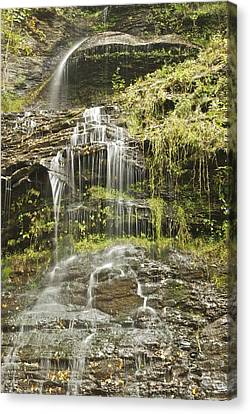 Cathedral Falls 3249 Canvas Print by Michael Peychich