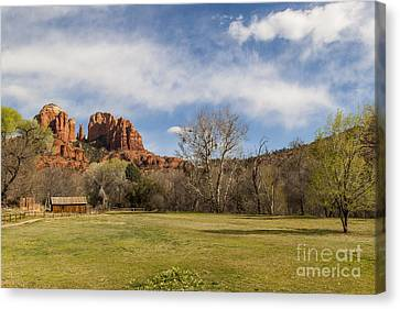Cathedral Rock From The Park Canvas Print by Darcy Michaelchuk