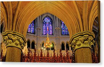Cathedral Study Canvas Print by Dave Mills