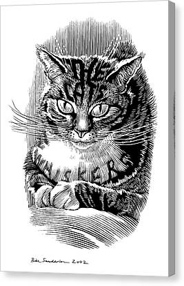 Cat's Whiskers, Conceptual Artwork Canvas Print by Bill Sanderson