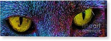 Catz Eyez Canvas Print by Tammy Herrin
