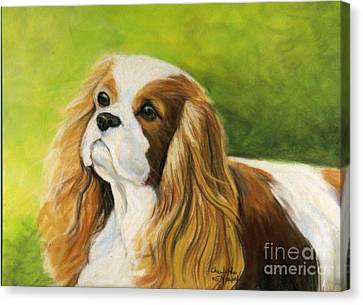 Cavalier King Charles Spaniel  Canvas Print by Charlotte Yealey