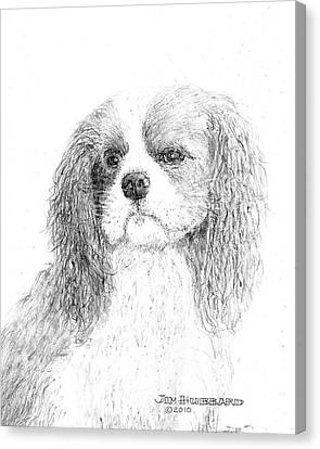 Canvas Print featuring the drawing Cavalier King Charles Spaniel by Jim Hubbard