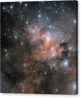 155 Canvas Print - Cave Nebula (sh2-155) by Davide De Martin