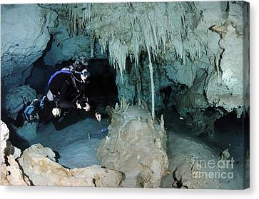 Cavern Diver In Dos Ojos Cenote System Canvas Print by Karen Doody