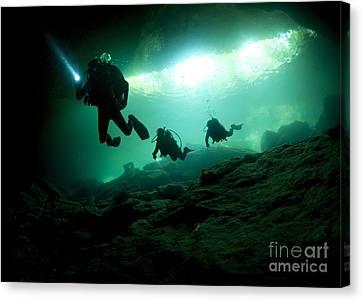 Cavern Divers Enter Cenote System Canvas Print