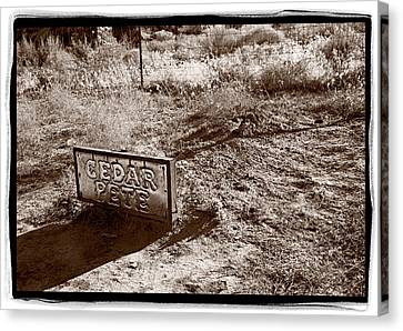 Cedar Pete Gravesite In Grafton Utah Canvas Print by Steve Gadomski