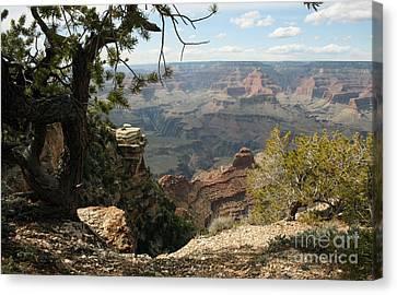 Cedar Ridge - Grand Canyon Canvas Print by Juan Romagosa