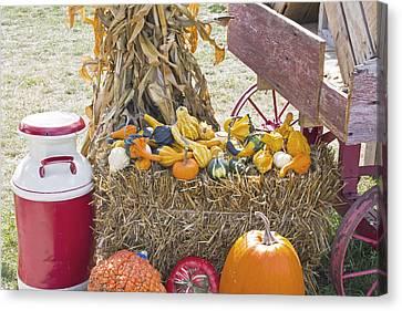 Celebrating Fall Canvas Print by Wayne Stabnaw