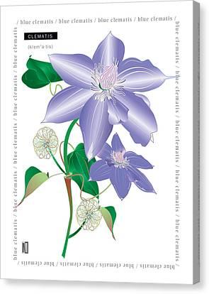 Celmatis Canvas Print