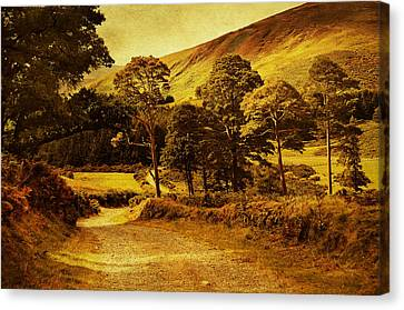 Celtic Spirit. Wicklow  Mountains. Ireland Canvas Print by Jenny Rainbow
