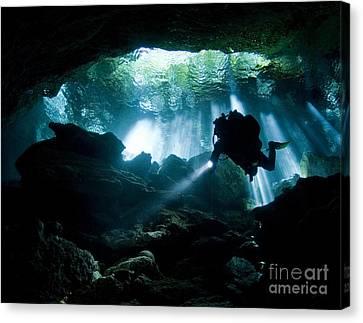 Cenote Diver Enters Taj Mahal Cavern Canvas Print