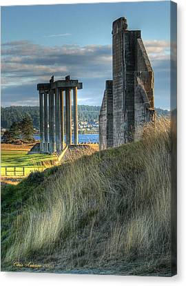 Central Meadow Ruins Canvas Print by Chris Anderson