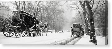 Horse And Cart Canvas Print - Central Park In Falling Snow by Axiom Photographic