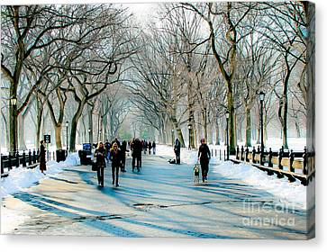 Central Park In Winter Canvas Print by Ken Marsh