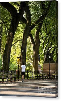 Jogging Canvas Print - Central Park Jogging by Brian Jannsen