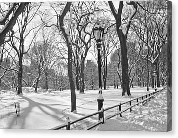 Central Park Snowfall Bw Canvas Print by Andrew Kazmierski
