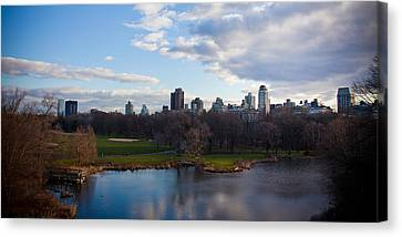 Central Park Canvas Print by Steven Gray