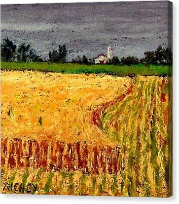 Central Pennsylvania Summer Wheat Canvas Print by Bob Richey