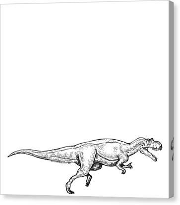 Ceratosaurus - Dinosaur Canvas Print by Karl Addison