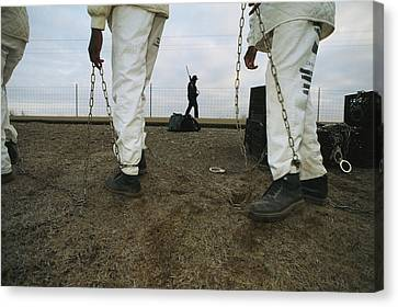 Chain Gang Prisoners Being Watched Canvas Print by Bill Curtsinger