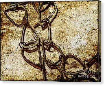 Chain Links Canvas Print by Judi Bagwell