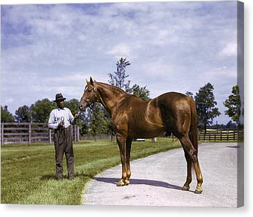 Champion Horse Man-o-war Poses With One Canvas Print