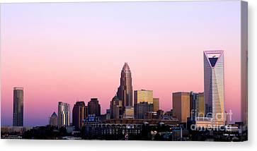 Charlotte Skyline Vibrant Pink Canvas Print