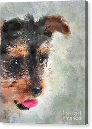Charming Canvas Print by Betty LaRue