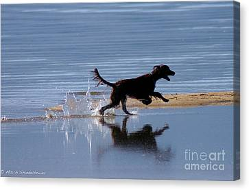 Canvas Print featuring the photograph Chasing Reflections by Mitch Shindelbower