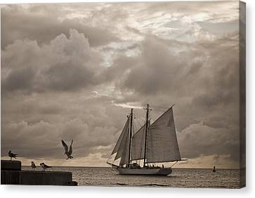 Chasing The Wind Canvas Print