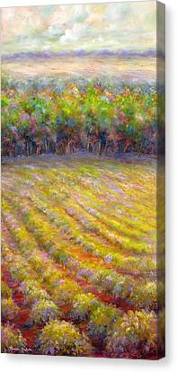 Chateau De Berne Vineyard Canvas Print by Bonnie Goedecke