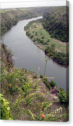 Chavon River View Canvas Print by Chris Hill