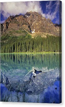 Chephren Lake And Mt. Chephren, Banff Canvas Print by Darwin Wiggett