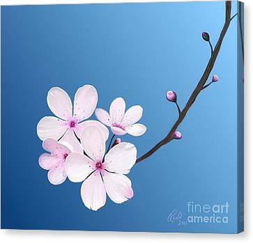 Cherry Blossoms Canvas Print by Rand Herron