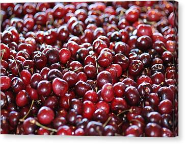 Cherry Canvas Print by Francois Cartier