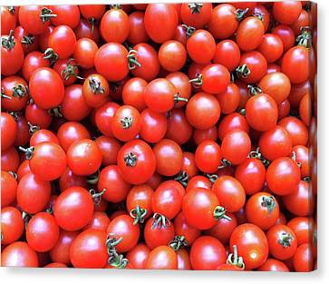 Cherry Tomatoes Canvas Print by Junku
