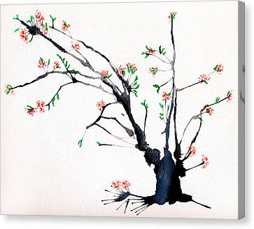 Cherry Tree By Straw Canvas Print by Helaine Cummins