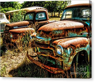 Chevy Vs. Ford Canvas Print by Joe Finney