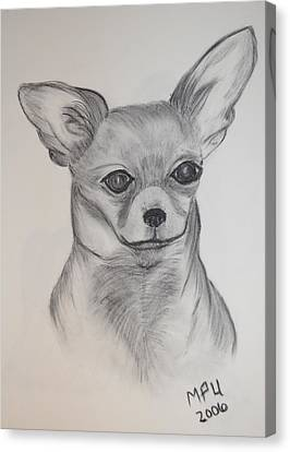 Canvas Print featuring the drawing Chi Chi by Maria Urso