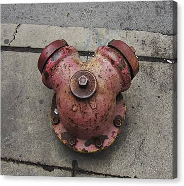 Chicago Hydrant Canvas Print by Todd Sherlock