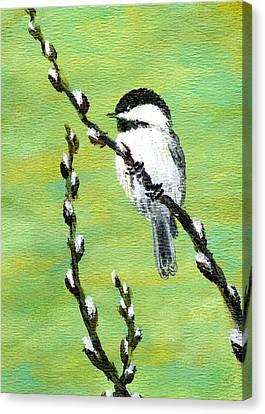 Chickadee On Pussy Willow - Bird 2 Canvas Print by Kathleen McDermott