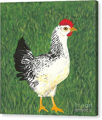 Chicken Canvas Print by Billinda Brandli DeVillez