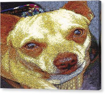 Chihuahua Canvas Print by Alice Ramirez